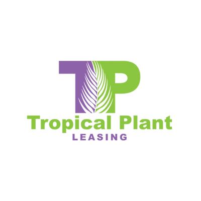 Tropical Plant Leasing in Miami, FL 33186 Plants & Floral Interior Design & Maintenance