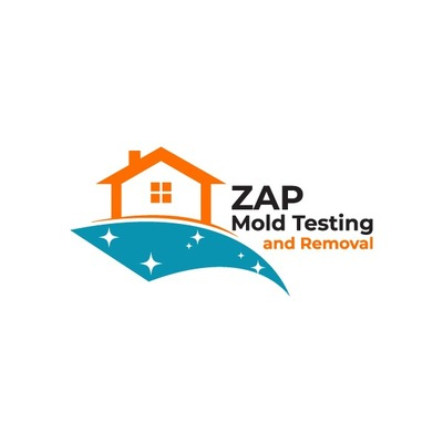 ZAP Mold Testing and Removal in Miami, FL 33167